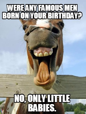 horse-birthday-question