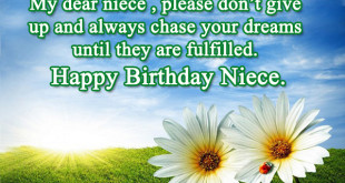 Birthday Wishes To Niece From Aunt Archives 2happybirthday