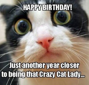 Birthday Meme For Cat