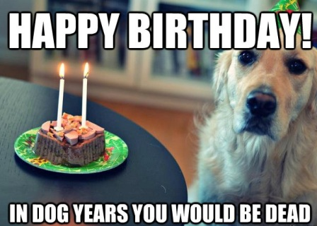 Funny Birthday Memes Minions : Top dog happy birthday funny memes happybirthday