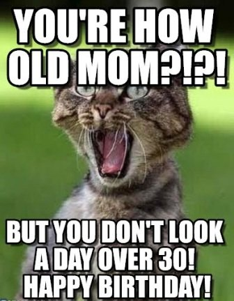 cat-mom-birthday-meme