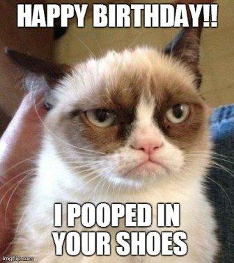 cat-poop-birthday-meme