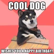 cool-dog-birthday-meme
