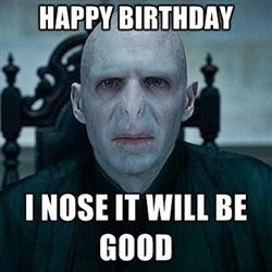 Lord Voldemort Harry Potter Birthday Meme