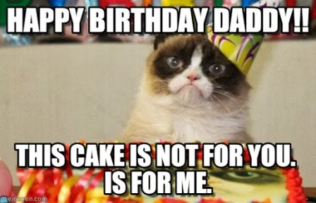 happy-birthday-cat-dade-meme