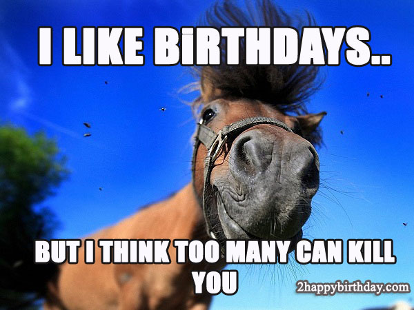 Happy Birthday Horse Funny