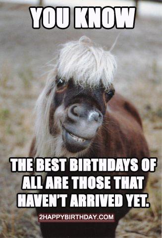 horse-birthday-trivia