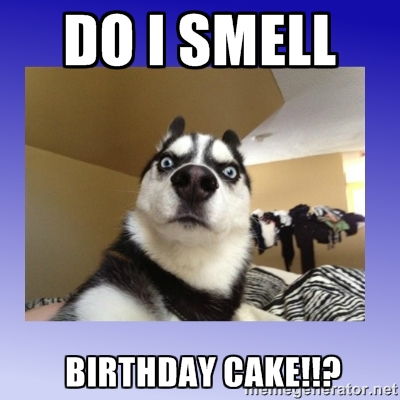 Happy Birthday Cake Meme Funny Wish Images 2HappyBirthday